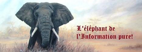 Abidjan : Tout le monde veut être claire ! | La côte d'ivoire au jour le jour! | Depigmentation en Afrique de l'ouest | Scoop.it