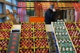 On vous a demandé : faut-il interdire les OGM ?   Communiqu'Ethique sur la santé et celle de la planette   Scoop.it