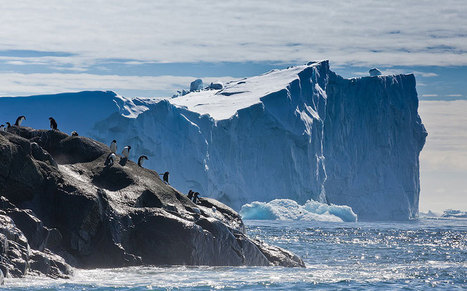 Beautiful icebergs of Antarctica - Telegraph.co.uk | Antarctica | Scoop.it