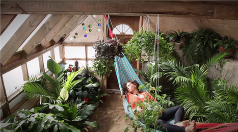 Grow Food Year Round With Radically Sustainable Passive Solar Greenhouse » EcoWatch | Towards Society 3.0 | Scoop.it