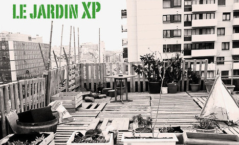 Sur son toit, le Jardin XP part à la reconquête de l'agriculture urbaine | Chuchoteuse d'Alternatives | Scoop.it