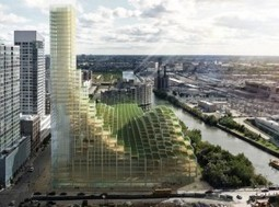 Wooden Skyscrapers: A New Level of Sustainability? | Commercial Property Executive | Green Thoughts | Scoop.it