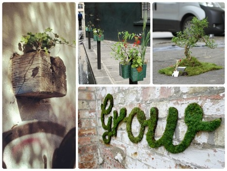 When A Garden Is More Than A Garden | Garden and Outdoor Australia 2 | Scoop.it