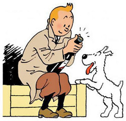 Tintin a franchi le cap des traductions dans 100 langues et dialectes | BiblioLivre | Scoop.it