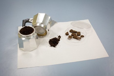 How To Clean Water With Old Coffee Grounds | Caffeinated Parrot | Scoop.it