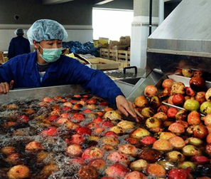 FDA Faces Lawsuit Over Food Safety Delays   Arizona Personal Injury Attorneys   Scoop.it