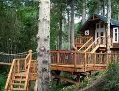 Bellissime treehouse nel mondo   Io Viaggio   Scoop.it