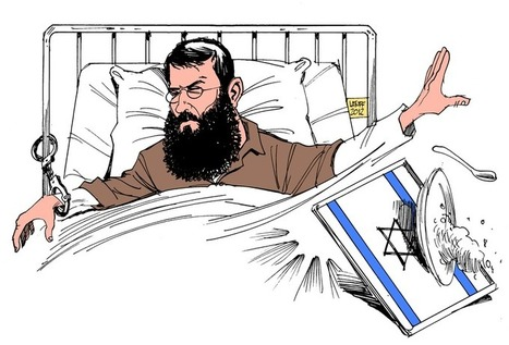Il faut sauver le prisonnier Sheikh Khader Adnan, | Occupy Belgium | Scoop.it