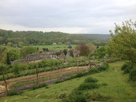 Bienvenue dans l'agriculture de demain, libérée des pesticides et du ... - Basta ! | Permaculture en France | Scoop.it