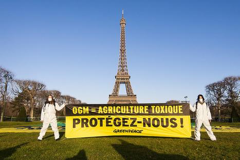 Nouveaux OGM, j'en veux pas (non plus) ! | Toxique, soyons vigilant ! | Scoop.it
