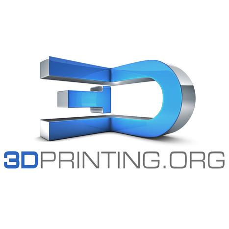 3DPrinting.org announces website launch date   3D Printing in School (501c3)   Scoop.it