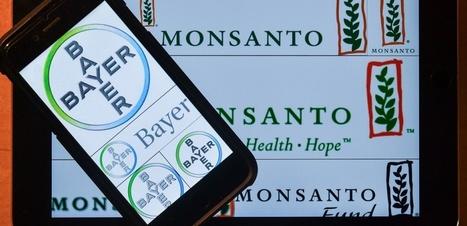 Bayer avale Monsanto : le bonheur des actionnaires fait le malheur... de tous | apiculture31 | Scoop.it