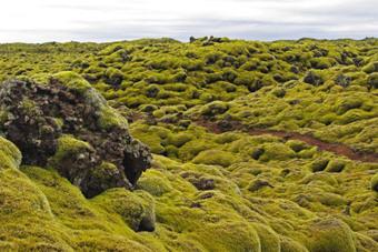 Ambiances d'Islande | carnet de voyage | Scoop.it