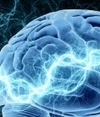 Shocks to the brain improve mathematical abilities | Neuroscience Research | Scoop.it