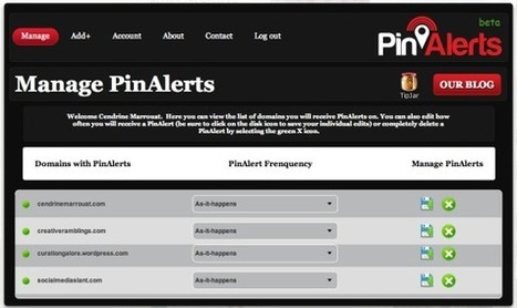 Track who shares your content on Pinterest with PinAlerts   Business in a Social Media World   Scoop.it