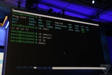 Quand Windows se fait Basher - Korben | [FTH]-NEWS | Scoop.it
