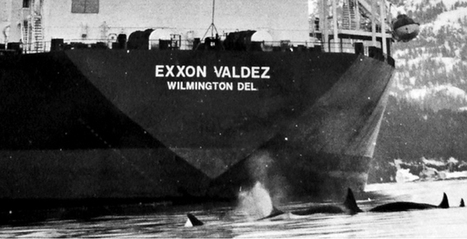#Worst #Oil disasters! Exxon Valdez: Moving Beyond Oil & Keeping Shell Out of the #Arctic » #EcoWatch | Rescue our Ocean's & it's species from Man's Pollution! | Scoop.it