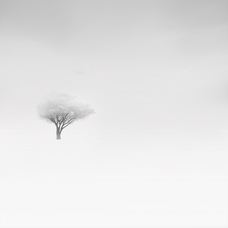 Faith is Torment | Art and Design Blog: Snowscapes: Photos by Vassilis Tangoulis | Photographers | Scoop.it