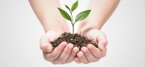 Tema Meio Ambiente mobiliza opinião pública | Guia Franca | Scoop.it