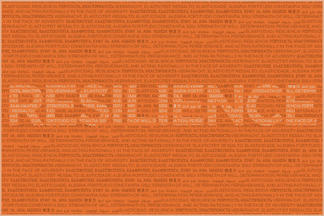 Translating Resilience   Rockefeller Foundation   Resilience   Scoop.it