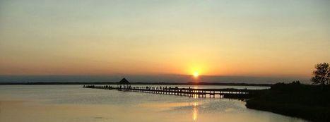 Daria's Ocean City Rentals Page   Ocean City, MD   Scoop.it