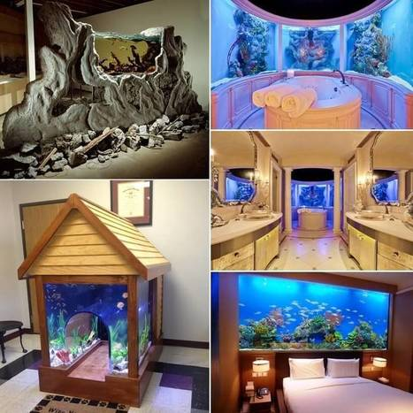 These Crazy Home Aquariums Will Take Your Breath Away   Decorating Ideas - Home Design Ideas   Scoop.it