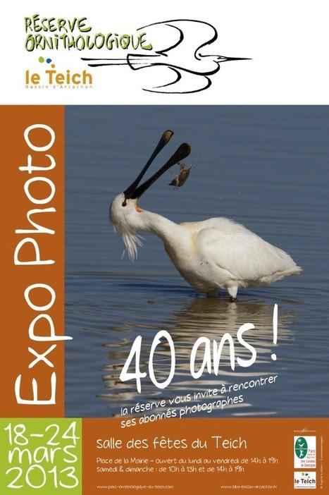 Venez fêter les 40 ans de la Réserve Ornithologique du Teich ! | Tourisme sur le Bassin d'Arcachon | Scoop.it