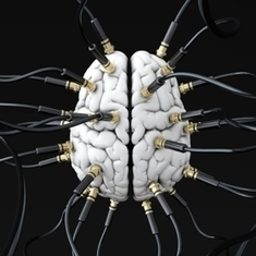 How Your Brain Is Wired Reveals the Real You - Scientific American | Research Capacity-Building in Africa | Scoop.it