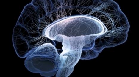 Seeking Cures for Terrible Brain Diseases | Neuroscience: Pharmacology & Drug Discovery | Scoop.it