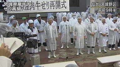 [Eng] La vente aux enchères de boeuf de Miyagi reprend | NHK WORLD English | Japon : séisme, tsunami & conséquences | Scoop.it