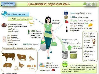 La consommation annuelle d'un Français ... | Communication environnementale 2.0 | Scoop.it