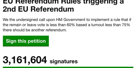 Petition For Second Referendum Investigated For Mass Fraud | Welfare, Disability, Politics and People's Right's | Scoop.it