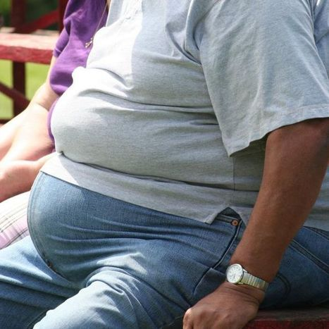 World Diabetes Day to highlight awareness   Childhood Obesity   Scoop.it