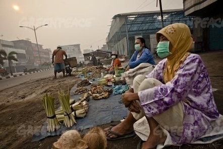 Clarity needed on companies behind the haze | Environmental Management in Indonesia | Scoop.it