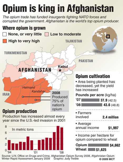 king-opium-infographic.jpg (920x1210 pixels) | Alcohol and Other Drug Infographics | Scoop.it