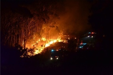 Green light for bushfire mitigation projects - The Land Newspaper | Fire prevention with grasses | Scoop.it