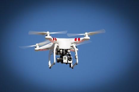 Et revoilà la puce électronique pour drones   Libertés Numériques   Scoop.it