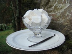 Welcome to Minto Marshmallows | Minto Marshmallows | Scoop.it