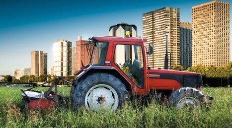 L'agriculture en ville   Mondes Sociaux   bio nature   Scoop.it