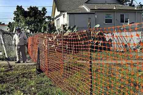 Santa Cruz installs temporary fence at Beach Flats garden   Think Fencing   Scoop.it