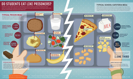What's Healthier, Prison Food Or A School Lunch? [Infographic] | Everything Healthcare | Scoop.it