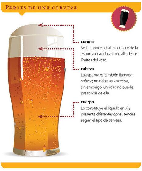 Pequeña guía del bebedor de cerveza | Educacion, ecologia y TIC | Scoop.it