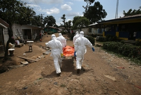 Ebola experience leaves world no less vulnerable   Virology News   Scoop.it