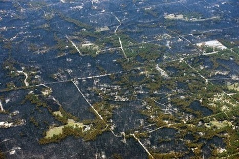 Black Forest wildfire most destructive in Colorado history – 24.5 ... | ayubia national park | Scoop.it