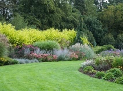 [Jardin] Peut-on lutter écologiquement contre les mauvaises herbes ? | Immobilier | Scoop.it