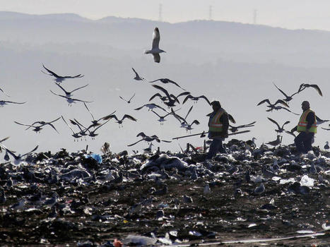 Nation's largest landfill is closing after half-century | AP HUMAN GEOGRAPHY DIGITAL  STUDY: MIKE BUSARELLO | Scoop.it
