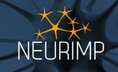 New biomaterials to address injuries to the peripheral nervous system - Nanowerk | biohacking | Scoop.it