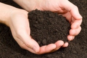 How to Find the Best Topsoil Supplier & Get the Most for Your Money   Heritage   Scoop.it