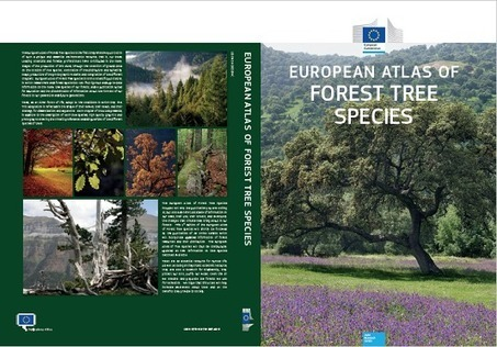 European Atlas of Forest Tree Species | Pest risk analysis | Scoop.it