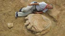 Giant footprint 'could shed light on titanosaurus behaviour' - BBC News | enjoy yourself | Scoop.it